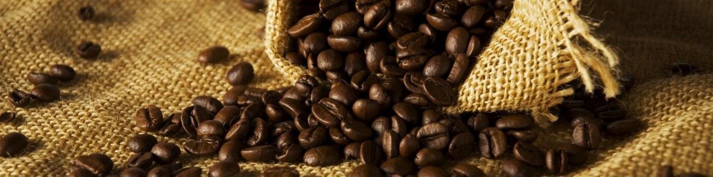 Espresso Coder